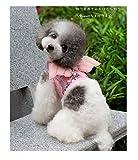 looboo Hunde Geschirr mit Flügel Weich anti-traction Vest Geschirr atmungsaktiv verstellbar komfortabel für Welpen Katze Tiere rosa schwarz