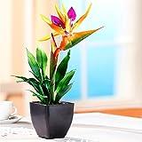 Tri Strelizie, Kunstblume Dekoration Kein Aufwand Keine Bewässerung Plastik Strelizie farbig Hingucker Farbakzent