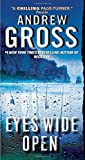 Eyes Wide Open by Andrew Gross (29-May-2012) Mass Market Paperback