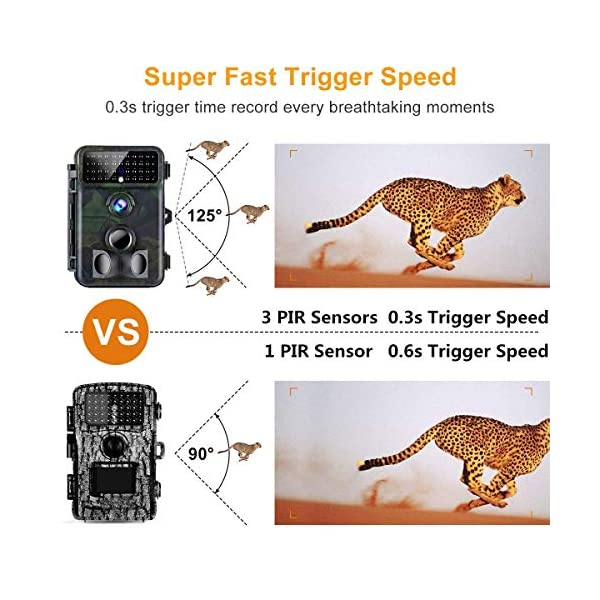 Trail Camera 16MP 1080P Tvird Wildlife Camera No Glow Night Vision Motion Activated 0.2S Trigger Speed 42PCS IR LEDs 125 Degree Wide Angle Motion Activated 20M/65 Feet Detection Range IP66 Waterproof Hunting Camera for Wildlife Monitoring/Home Security