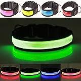 Collar de perro LED reflectante, recargable por USB, hebilla ajustable, alta visibilidad y seguridad, 4 colores, 3 tamaños