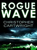 Rogue Wave (Sam Reilly Book 4) by Christopher Cartwright