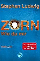 Zorn 6 - Wie du mir: Thriller