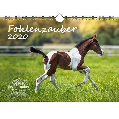 Fohlenzauber DIN A4 Kalender 2020 Pferde und Fohlen Geschenk-Set: Zusätzlich 1 Gruß- und 1 Weihnachtskarte - Seelenzauber