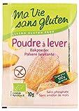 Best Gluten Farines gratuites - Ma Vie Sans Gluten - Poudre à lever Review