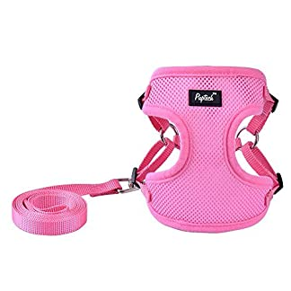 PUPTECK Harness for Small Dogs - Leash Set Adjustable Soft Mesh Pet Vest for Walking Pink 3