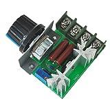 SODIAL(R) 2000W Voltage Regulator Dimmen Light Geschwindigkeit Temperaturueberwachung