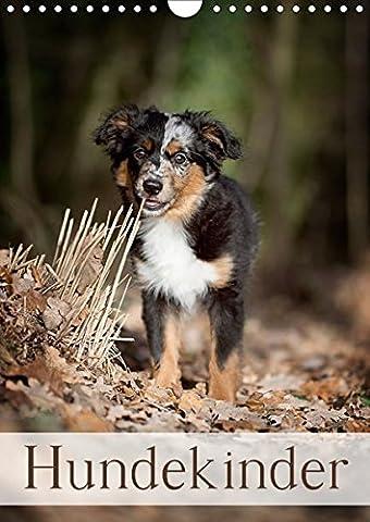 Hundekinder (Wandkalender 2018 DIN A4 hoch): Hundekinder (Monatskalender, 14 Seiten ) (CALVENDO Tiere) [Kalender] [Apr 01, 2017] Noack, (Akita Inu Hund)