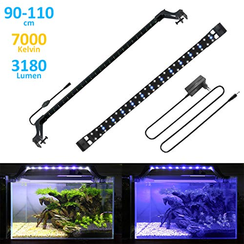 BELLALICHT Rampe LED Aquarium Éclairage LED Aquarium 24W Bleu & Blanc Lumiere Aquarium Plantes Lampe LED pour 90-110cm Aquarium - 7000K