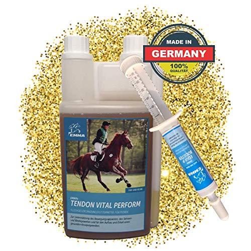 EMMA ♥ MSM Pferd I SPARSET I Gelenk, Bänder & Sehnen I Glucosamin, Chondroitin & Collagen I 1 Weidenrinde Booster 30 ml Plus 1 L