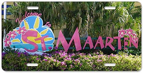 Fhdang Decor Floral Mandala Hipster Bohe,Aluminium Nummernschild, Front-Kennzeichen, Vanity Tag 4 Löcher Auto Tag Zubehör 15,2 x 30,5 cm - Front-hipster