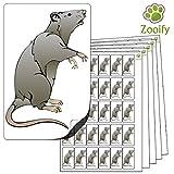 480 x Aufkleber - Ratte . Hochwertige selbstklebende Etiketten mit Tiermotiv von Zooify.