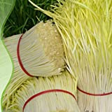 GEOPONICS SEMI: Bellfarm Bonsai Giallo Erba cipollina Grandi verdure focolaio cipollina alta germinazione -50pcs / pack