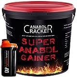 Super Anabol Gainer, Whey Protein Creatin Shake, 2400g Schoko oder Orangen Geschmack, Eiweißpulver + Shaker (Schoko)