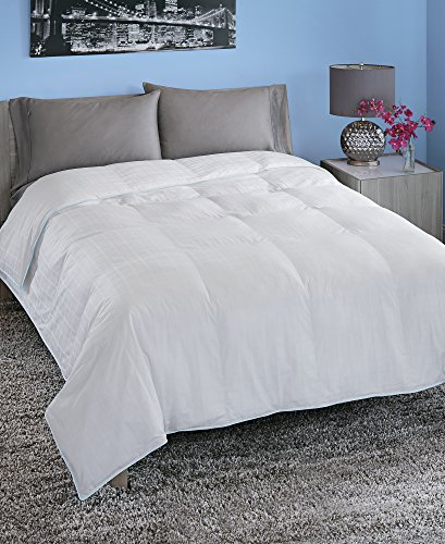 Spring Air Luxus Loft Down Alternative Tröster Twin, Full/Queen oder King, 100% Baumwolle, White With Light Blue Cording, King/108