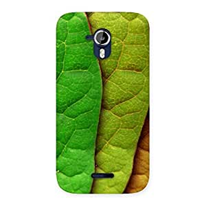 Leaf Pattern Multicolor Back Case Cover for Micromax Canvas Magnus A117