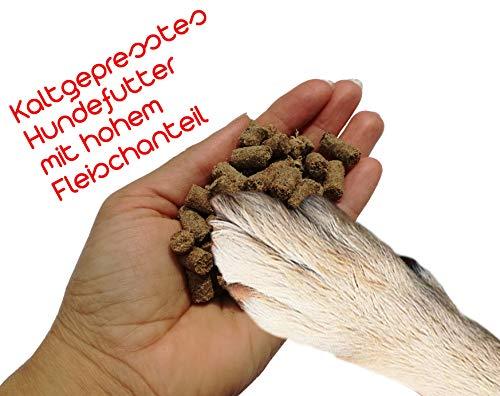 Bestes,Hochwertiges Kaltgepresstes Hundefutter Trockenfutter / Hund m. hohem Fleischanteil - auch für Welpen geeignet - Futter für Hunde - m. Beratung Direkt vom Hundezüchter - Probenpäckchen