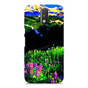 Hamee Designer Printed Hard Back Case Cover for Coolpad Cool 1 Design 2180