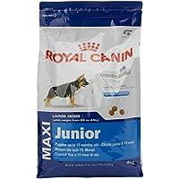 Royal Canin Alimento Cane Maxi Junior - 4000 gr