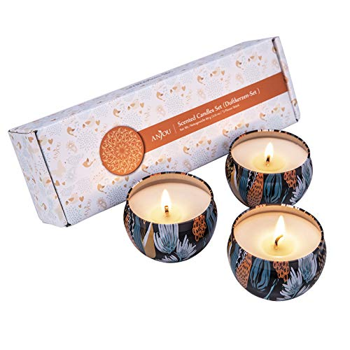Anjou, set di candele profumate, 100% cera di soia naturale fragranze, vaniglia bosco natalizio vento fresco per aromaterapia bagno yoga (3x60g)