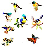 #4: Segolike 8 Pieces Assorted Iron On Embroidery Birds Applique Patches