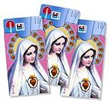 cardbox Motiv: MADONNA / MARIA mit Schein /// 3er SET /// Führerscheinhülle, Bankkartenhülle, Personalausweishülle