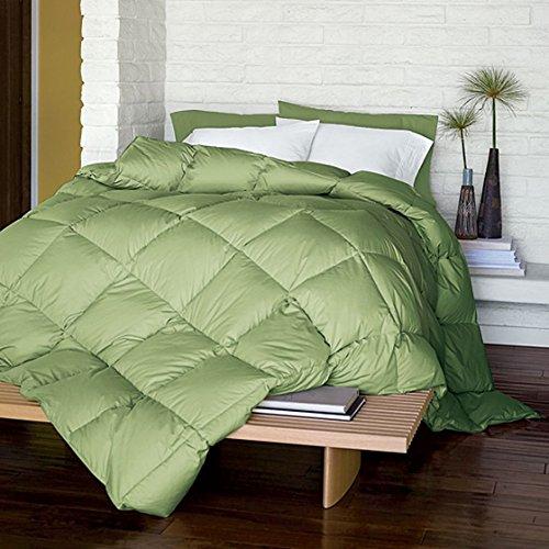 Linenwalas Classic Microfibre Single Bed Duvet/Comforter- Parrot Green
