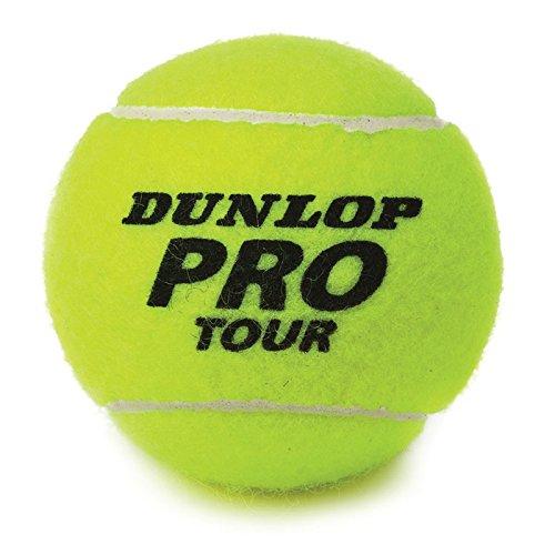 Preisvergleich Produktbild Dunlop 602200 - Volley Tennisball Koker