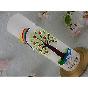 Taufkerze handgearbeitete Wachsverzierung Lebensbaum grün mit Äpfeln und Regenbogen Taufkerzen Junge Mädchen 250/70 mm inkl. Beschriftung