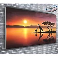 Giraffe nel tramonto panoramica Stampa Su Tela Animali Selvatici Framed 127x 50,8cm Over 1,2m larghezza x 0,5m alta pronto da appendere