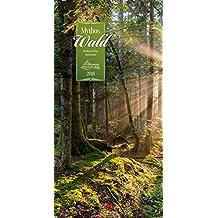 Mythos Wald 2018 (Literarische Reihe)