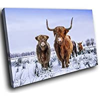 AA791E Framed Canvas Print Colourful Wall Art - Brown Snow White Highland Cow - Modern Animal Living Room Bedroom Piece Home Decor Interior Design Easy Hang Guide (90X60CM)