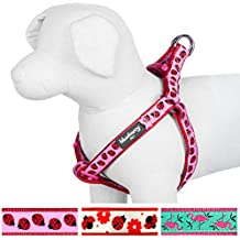 Blueberry Pet Step-in Ladybug Designer No Pull Dog Harness, Large