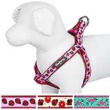 Blueberry Pet Harnais Tour de poitrail: 42-54cm, Motifs Coccinelle, Harnais chien, Réglable, Nylon, Collier et laisse assortis vendus séparément.