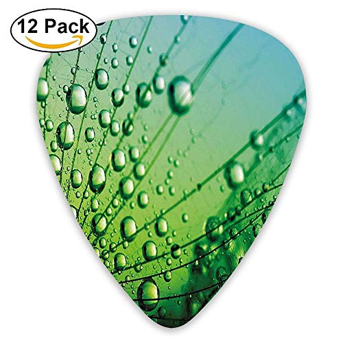 Floral Theme Macro Photo Of Dandelion Seeds With Water Drops Digital Guitar Picks 12/Pack Set