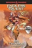 D&D Endless Quest: Big Trouble (Dungeons & Dragons Endless Que)