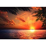 Vlies Fototapete PREMIUM PLUS 400x280cm CARIBBEAN SUNDOWN by liwwing (R)   Vliestapete Tapeten Bild Ornament Sonnenaufgang