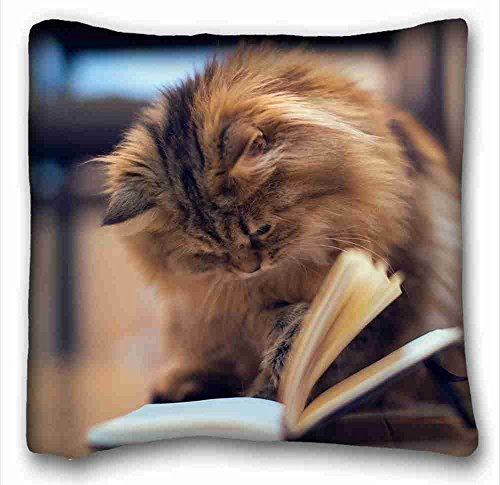 custom-characteristic-animals-cat-kitten-book-notebook-floor-page-game-diy-pillow-cover-size-16x16-s