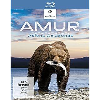 AMUR-ASIENS AMAZONAS (BD) - SP