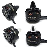WYXlink 2pc MT2204 2300KV CW/CCW Brushless Motor for Mini Quadcopter Thread Black (a)