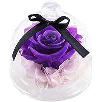 Creative Glas Cover Rosen Blumen, mamum Home Decor Endless erhalten Rosen Blume in Glas Romantisches Geschenk Geburtstag, plastik, violett, Einheitsgröße