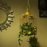 #5: Homesake Decorative Hanging Bird Cage, Balcony/Patio Planter Cage/Hanging Candle Holder, Golden