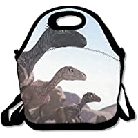 Preisvergleich für Lunch Tote Dinosaurier Lunch-Boxen Lunchpaket Handtasche Lebensmittel Aufbewahrung passend für Schule Reisen Arbeit Outdoor