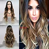 Best Lace Front Wigs - 61 cm ombre Black to Brown Body Wave synthetic Review