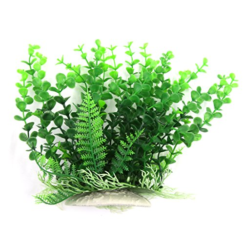Für Aquarium Guppys Pflanzen (Sourcingmap Künstliche Kunststoff Pflanze für Betta Aquarium Landschaft Dekoration, 21cm, grün)
