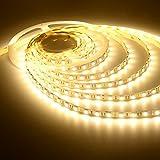 Lance Retail (TM) Waterproof Flexible LED strip(Warm White) 5m + Adapter/Driver,Decorative Light(SMD2835/3528/3014)