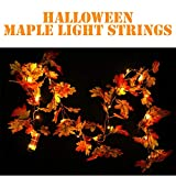 Llight String TAOtTAO Halloween 1.5M LED beleuchtet Herbst Herbst Kürbis Ahorn Blätter Garland Decor