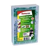 Fischer 531227 Meister-Box greenline Spreizdübel SX + A2 Schraube, Dübel und Schrauben Set, 120 Teile
