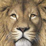 DIY 5D Diamond Painting, Crystal Rhinestone Embroidery Pictures Arts Craft for Home Wall Decor Brown Lion 9.8 x 9.8