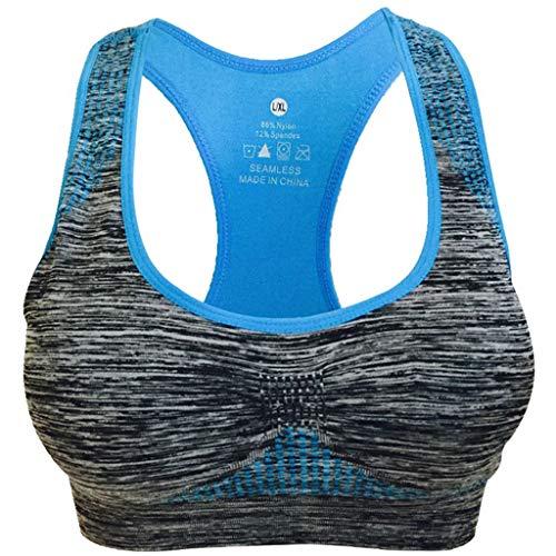 Push Up Frauen Nahtlose Sport BH High Impact Pocket Yoga Tops Unterwäsche Kein Stahlring ()